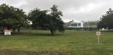 Terreno en Coronado